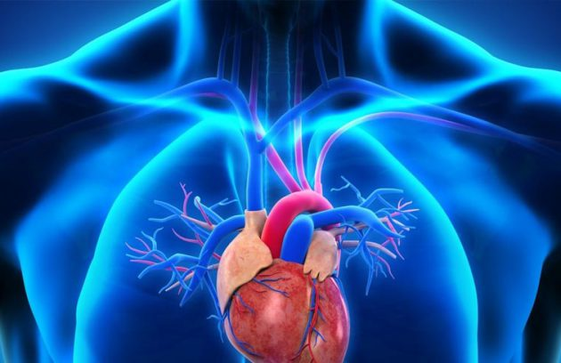 Internal Medicine & Rheumotology